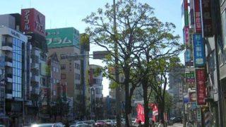 【福岡・西新】新入生・移住者のための西新まるわかりガイド