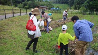 今津リフレッシュ農園で「ジャガイモ・タマネギ収穫体験」しませんか?