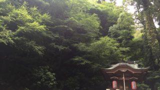 【福岡】春や初夏に最適のおすすめ新緑スポット巡り3選!