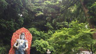 【パワースポット】福岡・篠栗町「南蔵院」で緑に包まれる