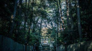"""【福岡・緑のパワースポット】宗像""""八所宮""""緑の参道を通って神秘的な世界へ!"""