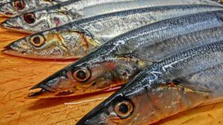 秋の味覚!美味しい秋刀魚の見分け方 福岡の名店もご紹介