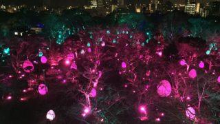 福岡城でチームラボが「城跡の光の祭」開催中!