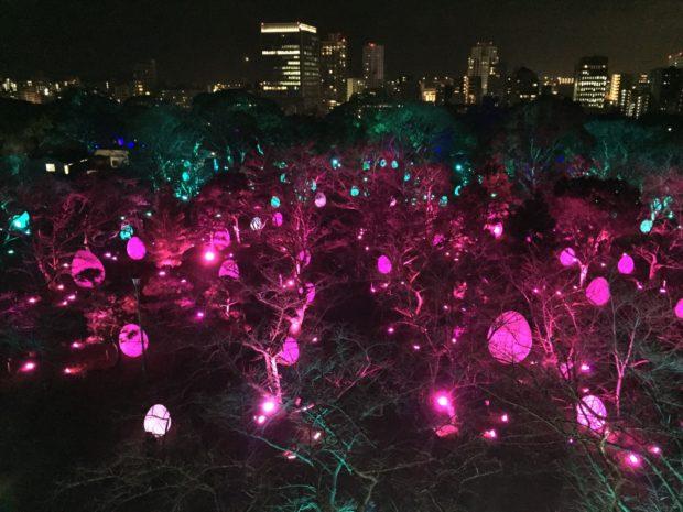 福岡城「城跡と光の祭」
