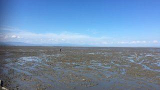 有明海で遊ぼう!道の駅鹿島で干潟体験