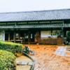 【武雄】川古の大楠の見どころ|佐賀武雄のおすすめパワースポット・公園