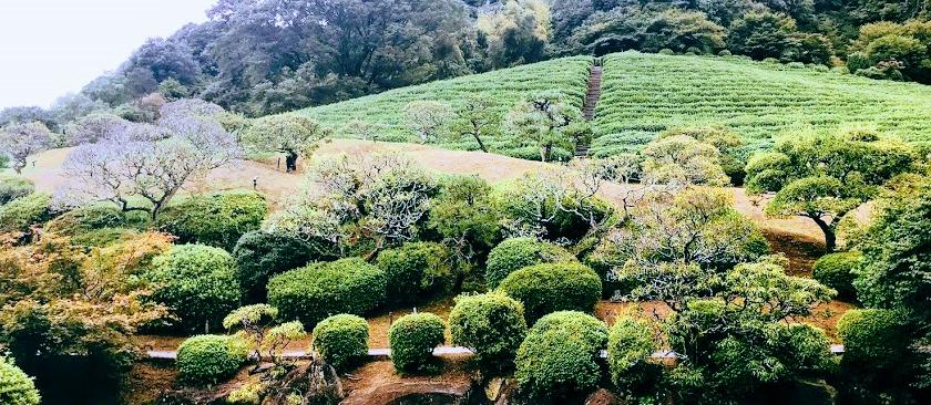 慧洲園 日本庭園