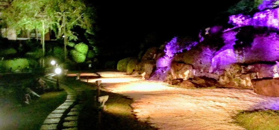 慧洲園 日本庭園 夜