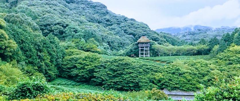 慧洲園 展望台
