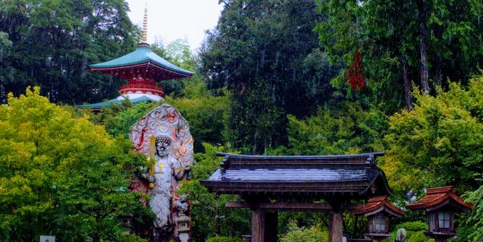 普明山高野寺 シャクナゲ寺
