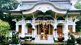 武雄神社の見所|武雄の大楠・夫婦檜(縁結びの御神木)を巡るパワースポット