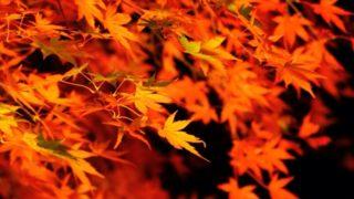 九州各地の紅葉の名所一覧