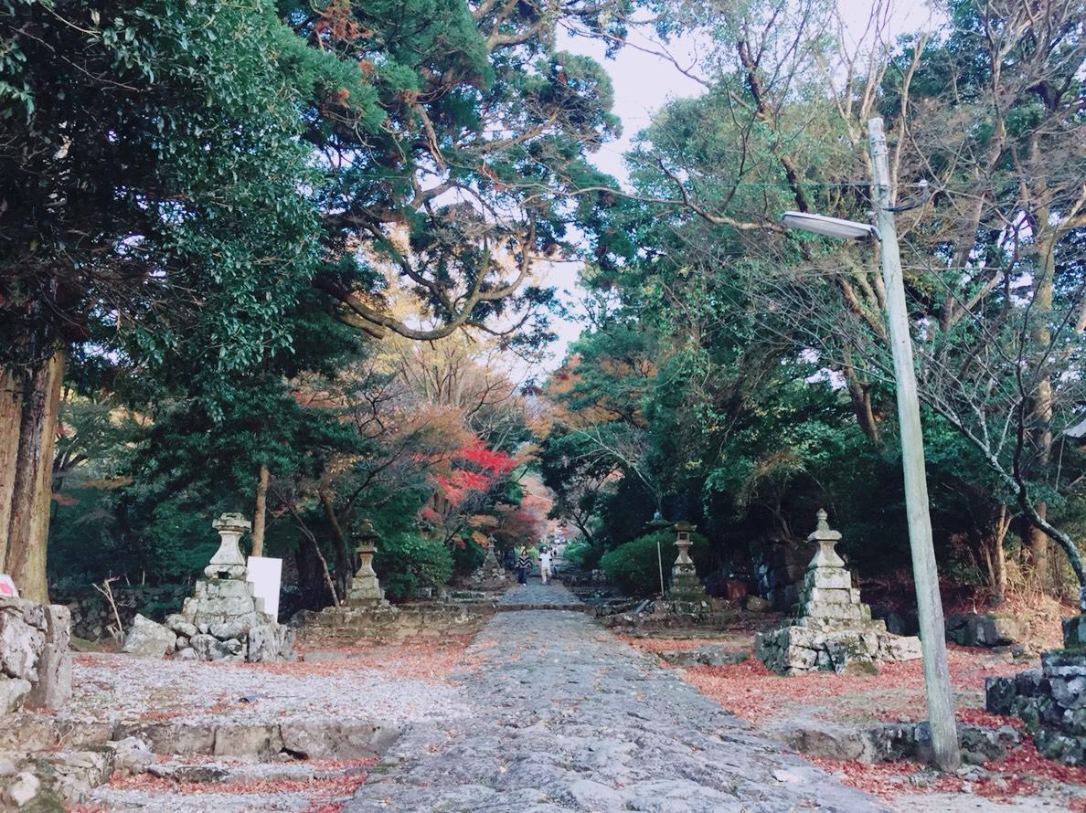 英彦山神宮参道