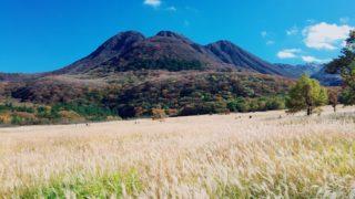秋の久住高原おすすめのドライブコース 自然満喫スポット満載