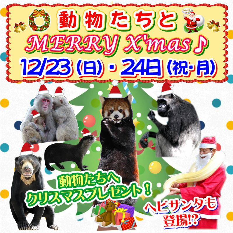 福岡市動物園クリスマスイベント