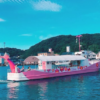 【福岡から呼子観光】七ツ釜遊覧船イカ丸に乗って絶景スポットを鑑賞