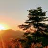 国見ケ丘展望台|高千穂が一望できる絶景雲海・夕日・朝日スポット