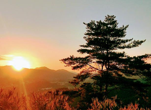 国見ケ丘展望台