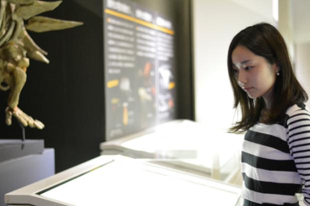 九州市立いのちのたび博物館1