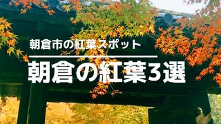 朝倉市紅葉サムネイル