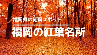 福岡県の紅葉サムネイル