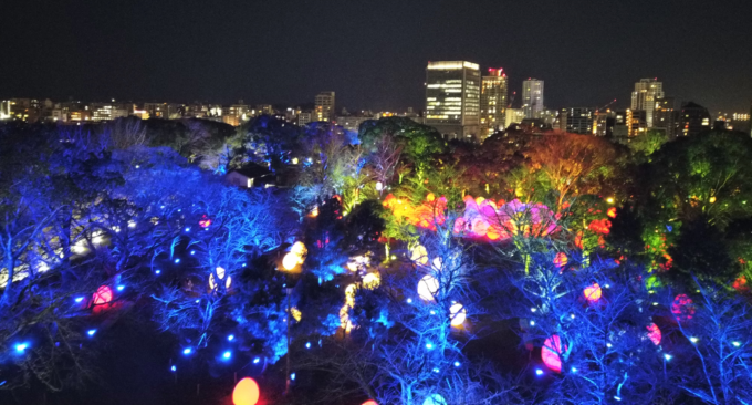 福岡城跡からの夜景