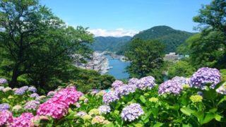 福岡のあじさいの名所おすすめスポット一覧